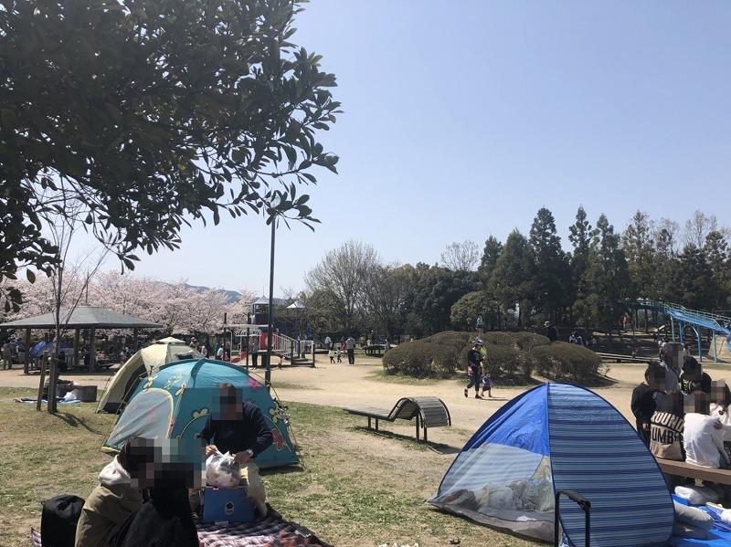 芝生でピクニックやテント