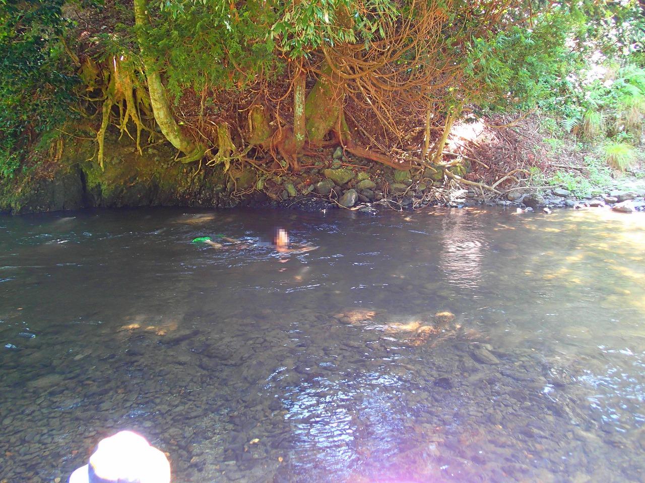 川で泳げる