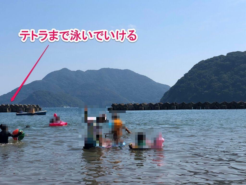 テトラポットまで泳いでいける